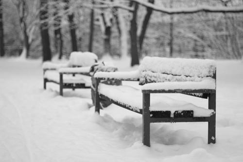 winter_02_miko