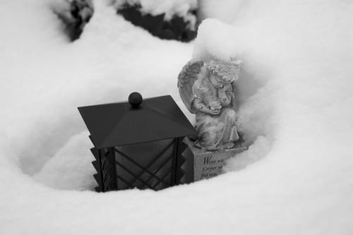 winter_05_miko