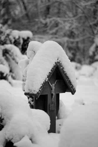 winter_07_miko