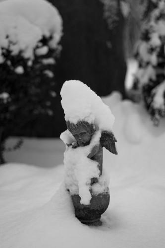 winter_08_miko