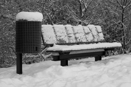winter_10_miko