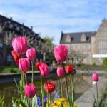 One Shot: Frühling auf dem Friedensplatz